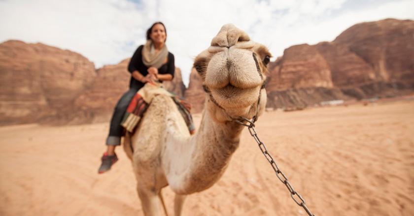 Desert safari dubai discount coupons